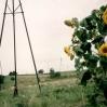 Kopalnia ropy wLipinkach - © Edward Ślusarz 2003