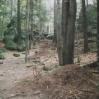Diabli Kamień 2004