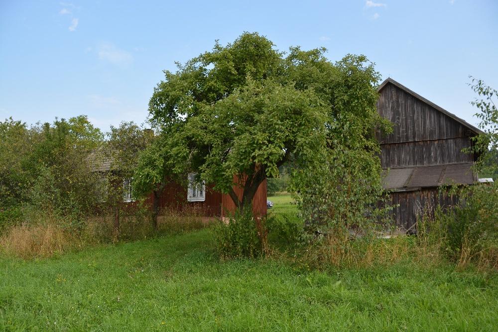 Sprzedam Dom Drewniany W Lipinkach Elipinki Pl Niezalezny