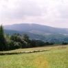 Góra Grzywacka w Kątach
