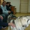 Husky wWTZ Lipinki 2009