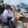 szachy09