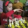 szachy15
