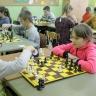 szachy21