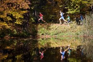 Park wLipinkach wykorzystywany jest przezbiegaczy