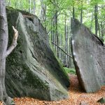 Kamień nakamieniu Wiesława Myśliwskiego – Podsumowanie