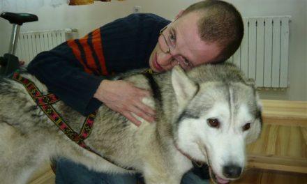 Psy polarne wWTZ Lipinki