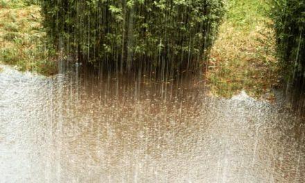 Niepokojąca prognoza pogody. Czeka nas deszcz! /aktualizacja/