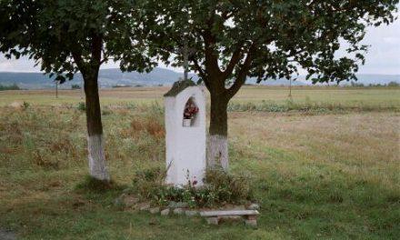 Janusz Karp: Moja Wójtowa
