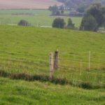 Milczące pastwiska atożsamość kulturowa regionu