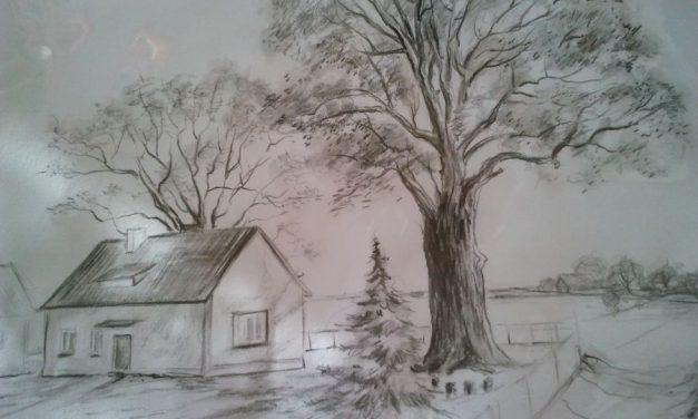 Dąb Pagorzynek, czyli pomnik przyrody przy leśniczówce wPagorzynie