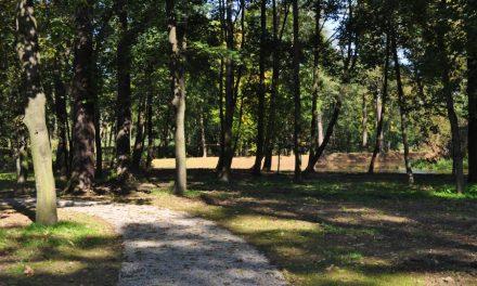 Gminny projekt rewaloryzacji parku wLipinkach najlepszy wMałopolsce!
