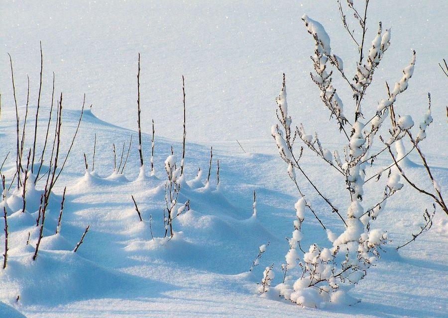 Powraca zima. Zapowiada się śnieżny weekend!