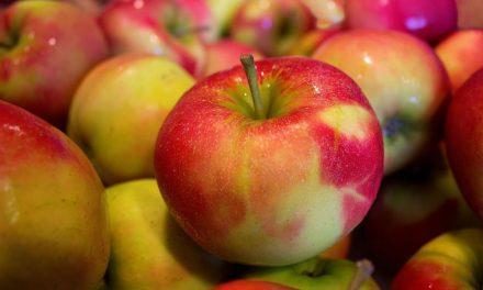 Jabłka odCaritas między 15.00 a16.00! Zmiana godzin wydawania!