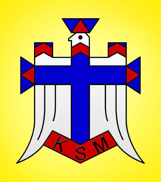 Młodzież zlipińskiego oddziału KSM marzy onowym sztandarze