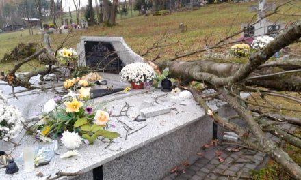 456 złotych nasprzątanie starego cmentarza wLipinkach