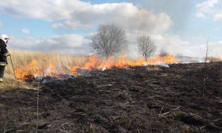 """Kampania """"Stop pożarom traw!"""" – 38 pożarów wgminie Lipinki"""